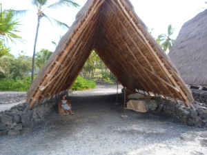 Halau or thatched work house.