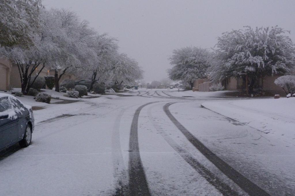 Snow in our neighborhood