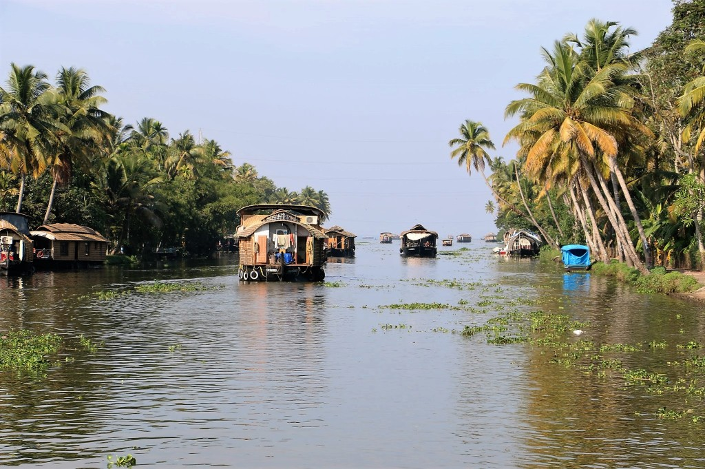 Houseboats in Aleppey
