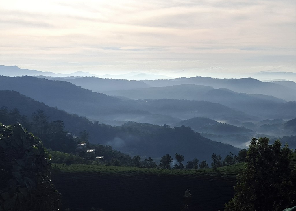 Munnar- View from our hotel