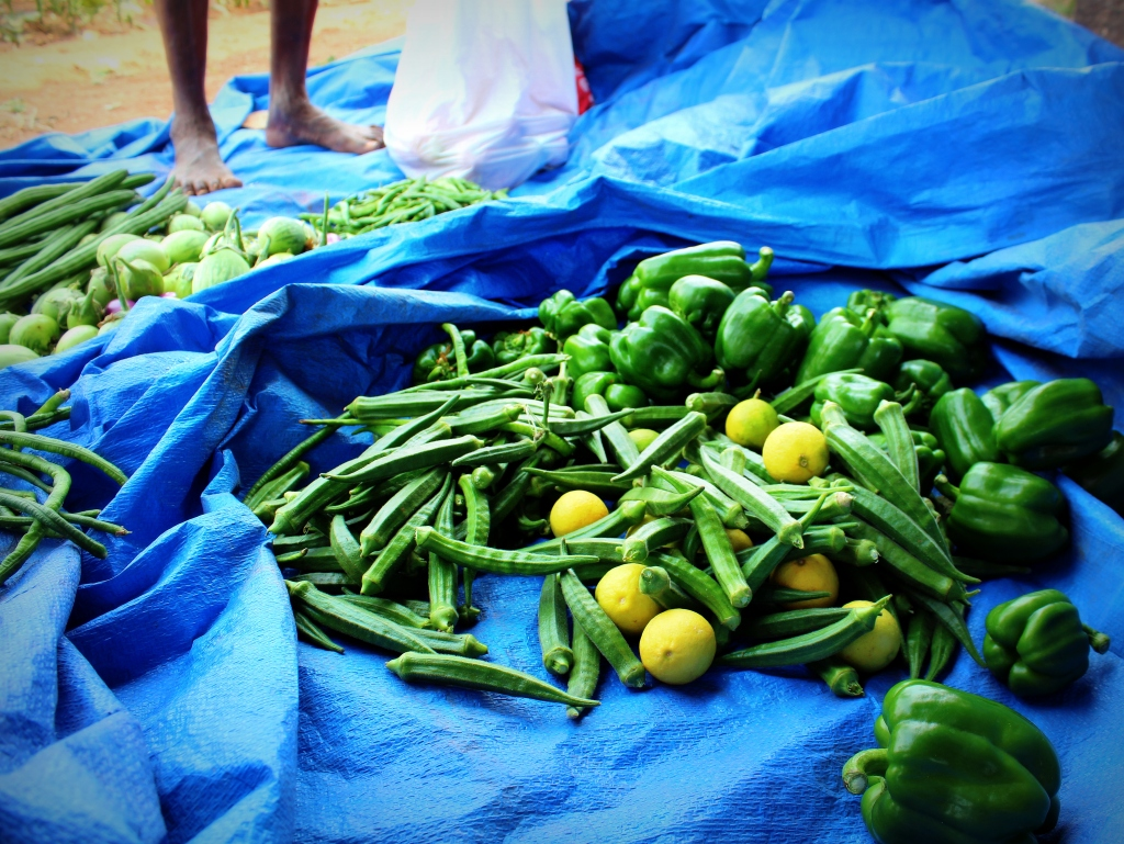 Vegetables from the farm
