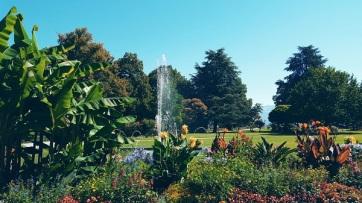 garden-around